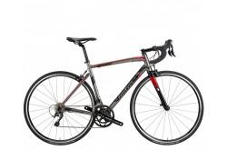 Wilier Montegrappa'18 Tiagra Grey / Велосипед шоссейный, Шоссейные - в интернет магазине спортивных товаров Tri-sport!