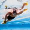 Finis Agility Medium / Лопатки для плавания, Лопатки - в интернет магазине спортивных товаров Tri-sport!