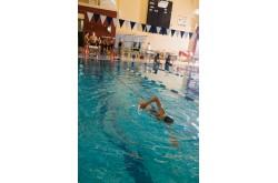 StrechCordz Long Belt Slider Quick Connect - Пояс для плавания с сопротивлением, с QC разъемом, Тренажеры - в интернет магазине спортивных товаров Tri-sport!