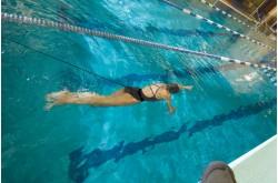 StrechCordz Short Belt - Короткий пояс для плавания c сопротивлением, Тренажеры - в интернет магазине спортивных товаров Tri-sport!