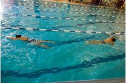 StrechCordz Grudge Belt - Соревновательный тренажер/пояс для плавания, Тренажеры - в интернет магазине спортивных товаров Tri-sport!